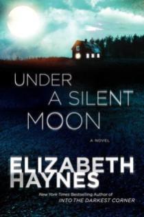 under a silent moon by elizabeth haynes