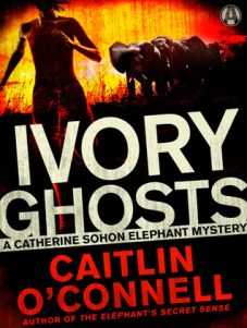 ivory ghosts by caitlin o'connell