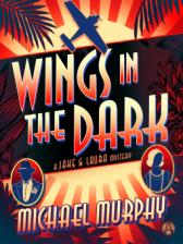 wings in the dark by michael murphy