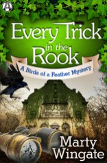 every trick in the rook by marty wingate
