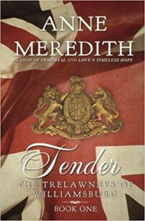tender by anne meredith