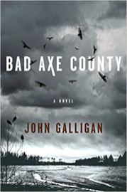 bad axe county by john galligan
