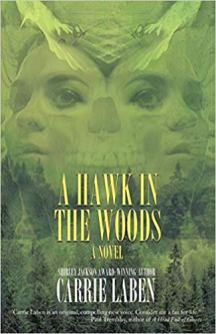 hawk in the woods by carrie laben