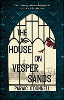 house on vesper sands by paraic odonnell
