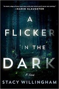 flicker in the dark by stacy willingham