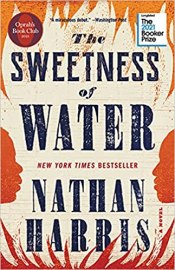 sweetness of water by nathan harris
