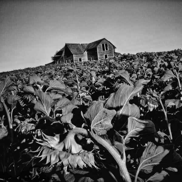 Depicting Poverty: Matt Black Pushes Documentary Photography to its Fullest Range
