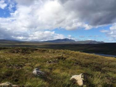 Die Highlands in der Nähe des Tay. Auch wenn in Schottland früher rigoros abgeholzt wurde, dieser Teil des Lands war vermutlich nie bewaldet.