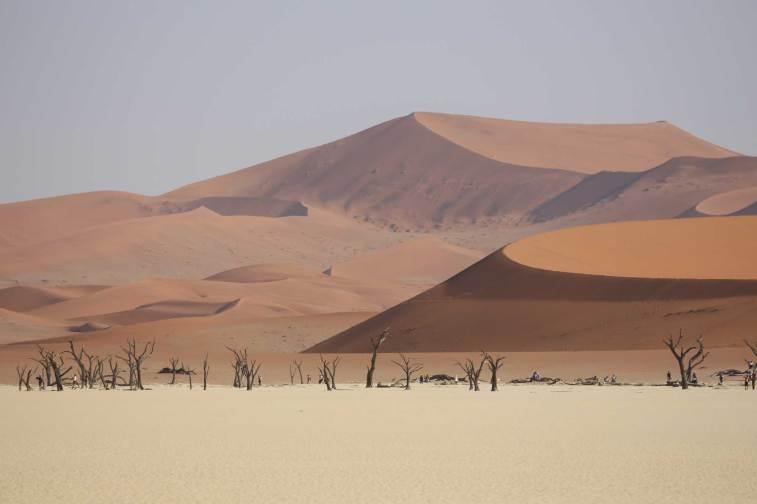 Deadvlei. Hier sind die höchsten Dünen der Welt.
