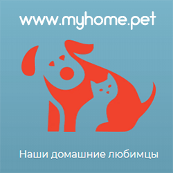https://i2.wp.com/www.readok.info/wp-content/uploads/2020/07/myhomepet.png?w=780&ssl=1