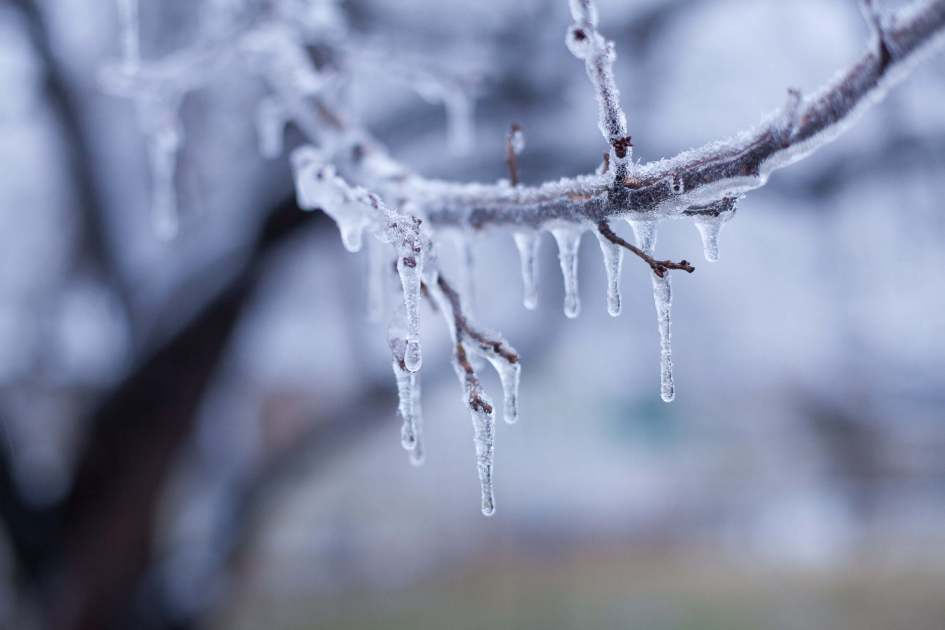 Beth Dean Photo - Icy Winter Day-2