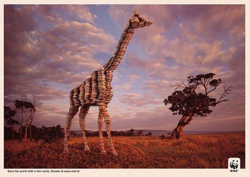 WWF Giraffe Coins