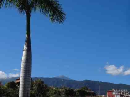 Teneryfa - Loro Park (widok na Teide)