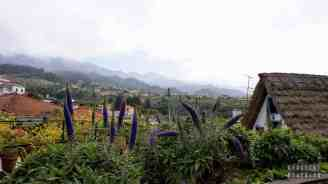 Tradycyjne chaty - Santana, Madera