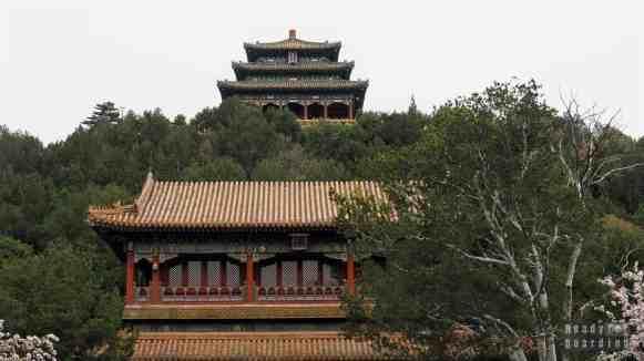 Pawilon Wiecznej Wiosny w Parku Jingshan, Pekin