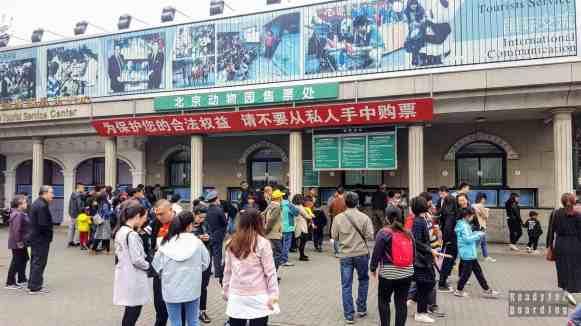 Kasy w Zoo w Pekinie, Chiny