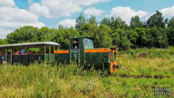 Kolej wąskotorowa w Rogowie