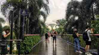 Dragonfly Bridge, Gardens by the Bay - Singapur