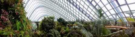 Treetop Walk w Cloud Forest, Gardens by the Bay - Singapur