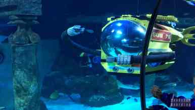 SeaLife, Legoland Billund - Dania