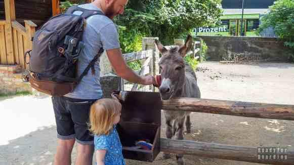 Tierpark Gorlitz