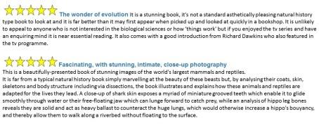 ING book reviews
