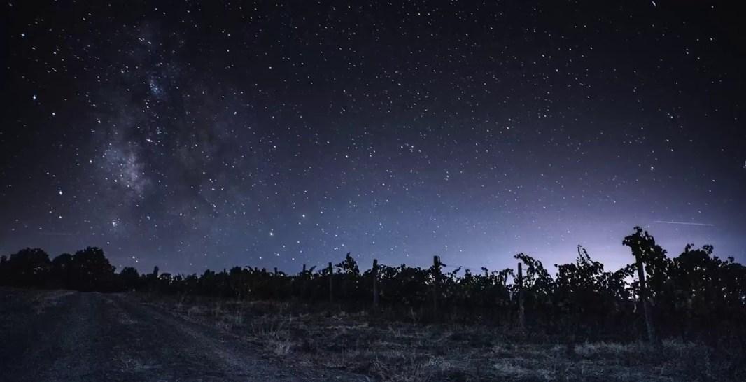 Pietramora vigneto notturna