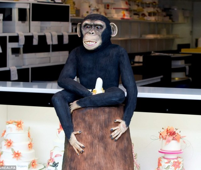 This Cheeky Monkey Cake And His Banana Are Causing Quite A Stir Real Fix
