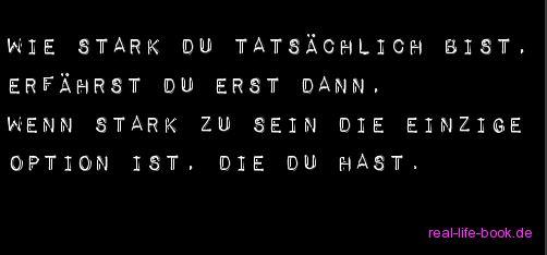 8reallifebook.de