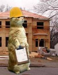 Cat, building inspector! Use the alphabet list for shorter lists.