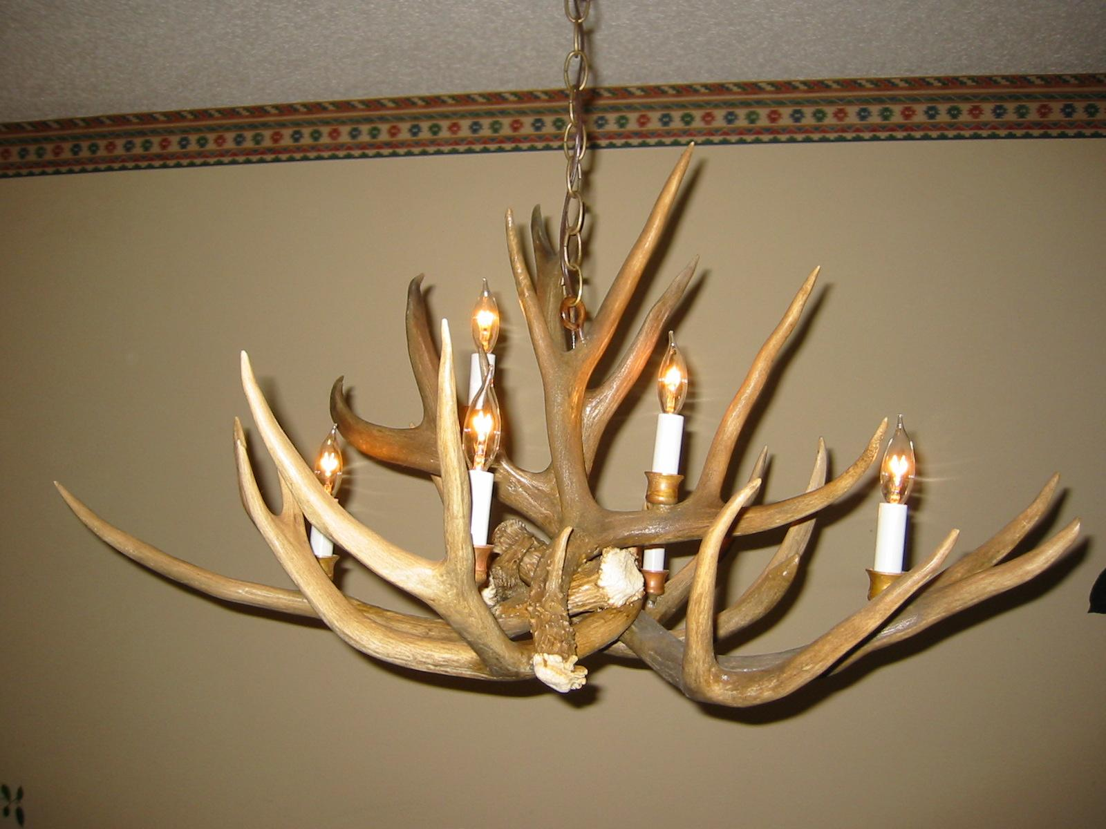 Mule Deer Antler Chandelier 6 Light