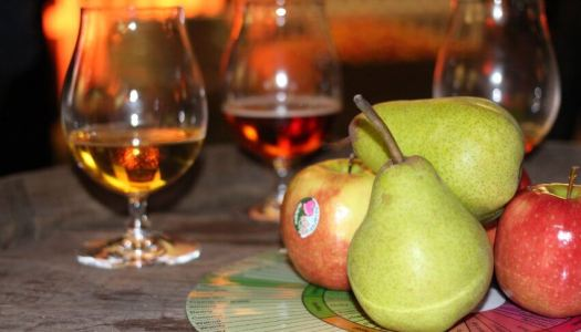 Cider Industry Looks To Future of Cider Taxation