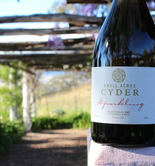 Small Acres Cyder Sparkling Traditional Dry