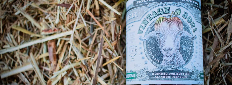 Dollar Bill Brewing Cider Way 2021 sitting in hay