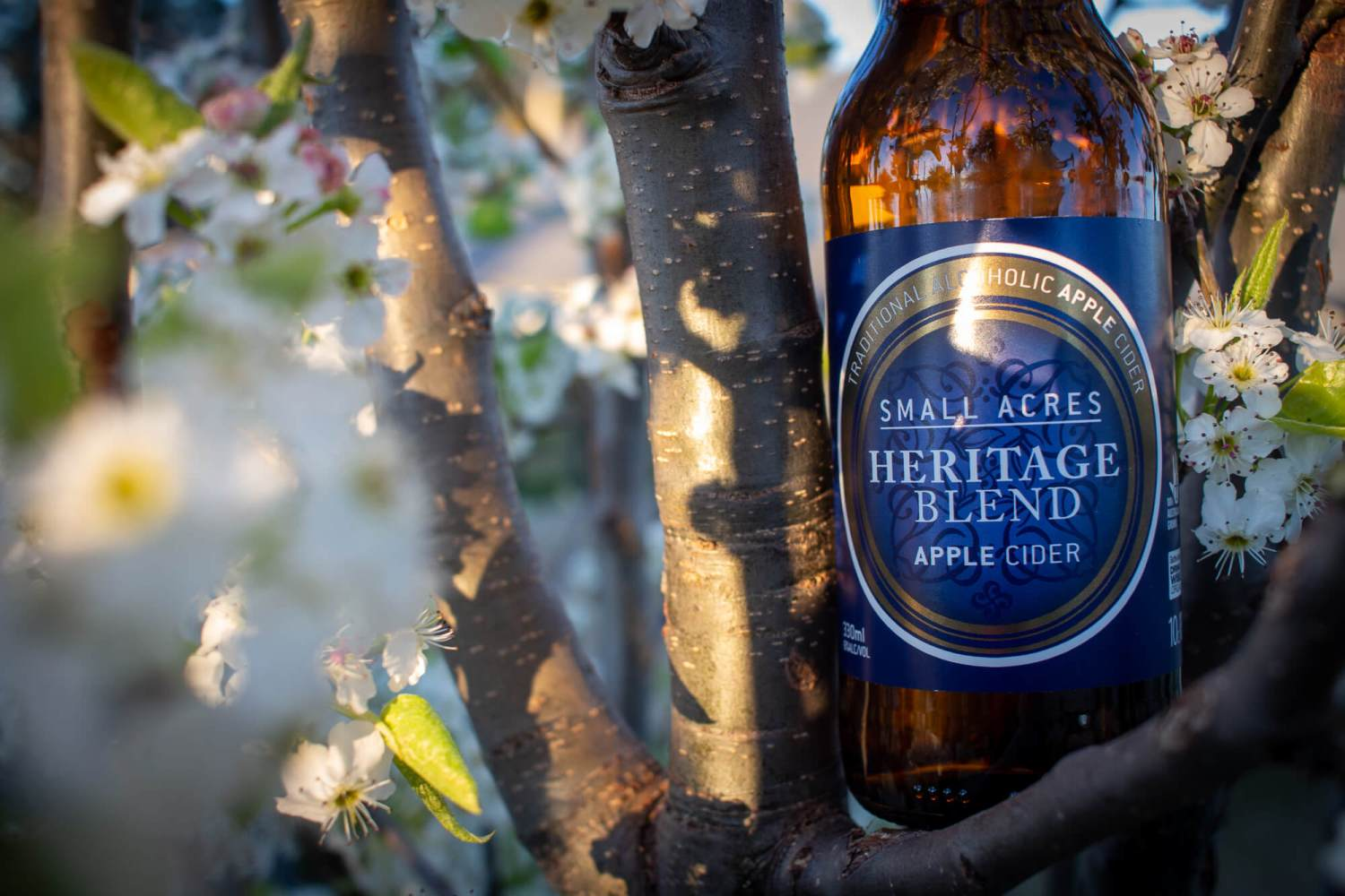 A Bottle of Small Acres Heritage Blend sitting in the branches of a blossoming tree