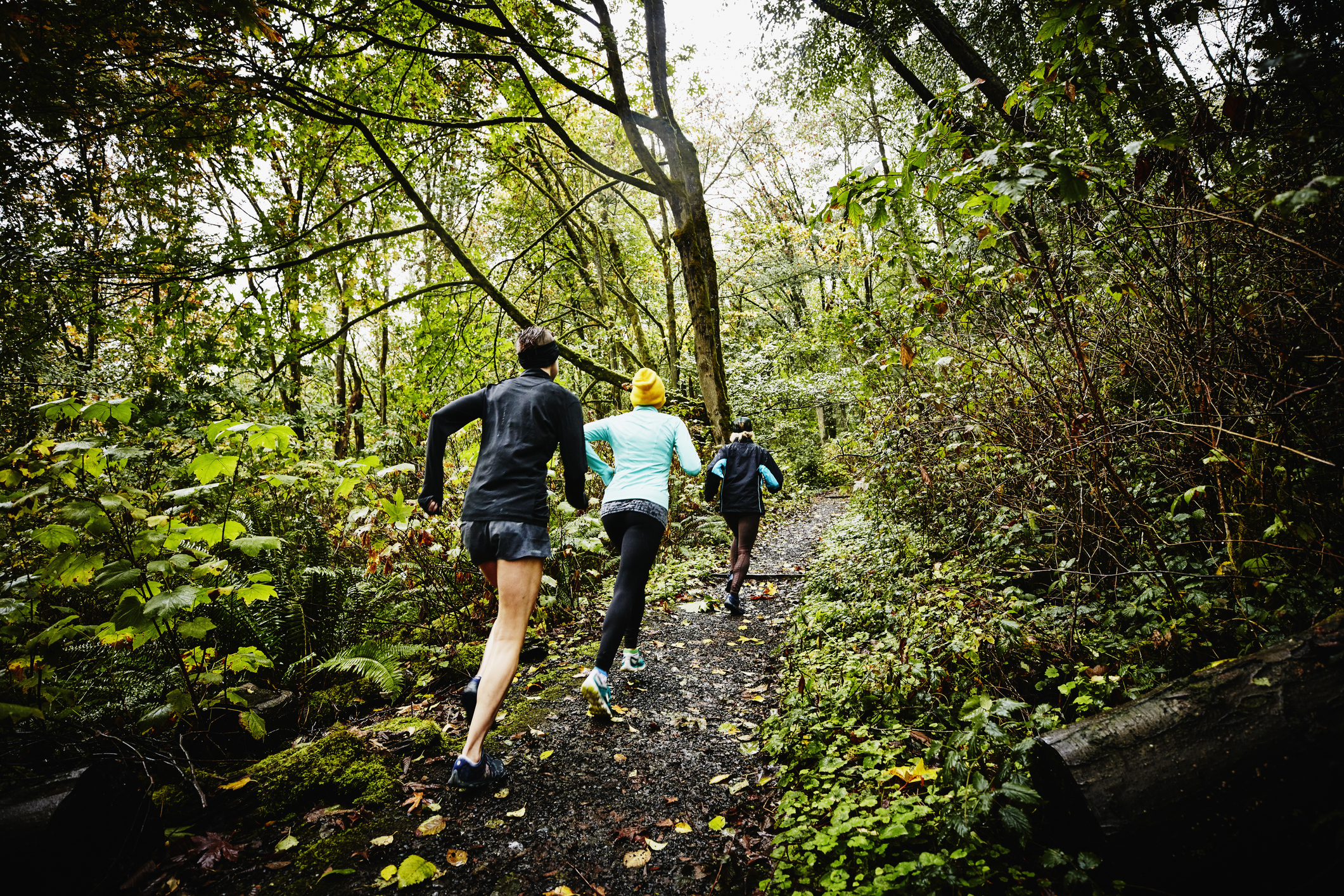 Quot Plogging Quot The New Fitness Trend Perfect For Lovers Of