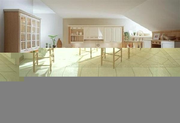 Contemporary Dinning room Design