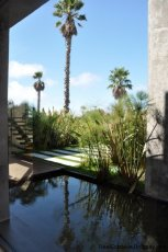 3980-Modern-Country-House-in-Punta-Piedras-1165