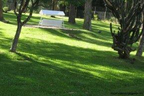 4706-Impressive-Modern-Residence-in-Playa-Brava-Area-1082