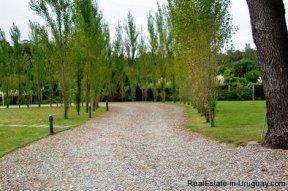 4706-Impressive-Modern-Residence-in-Playa-Brava-Area-1083