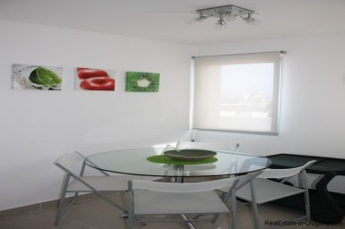 4543-Modern-Penthouse-with-360-Degree-Views-on-Playa-Brava-1974