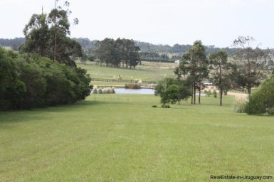 4850-Wonderful-Ranch-Land-just-2km-from-the-Sea-Punta-Piedras-1886