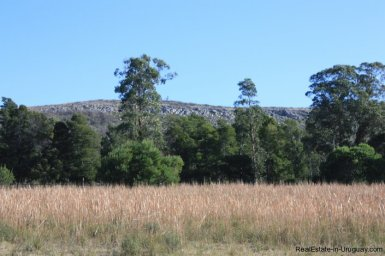 4113-Land-offering-many-Development-Possibilities-and-Mountain-Views-in-Las-Vertientes-2162