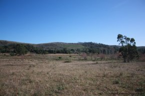 4113-Land-offering-many-Development-Possibilities-and-Mountain-Views-in-Las-Vertientes-2168