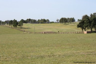 4482-Plots-in-Pueblomio-Development-with-Countryside-Views-and-La-Barra-Golf-Club-2238