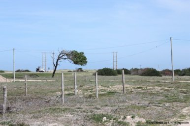 4515-Plot-just-Meters-from-Jose-Ignacio-Lagoon-by-La-Juanita-2151