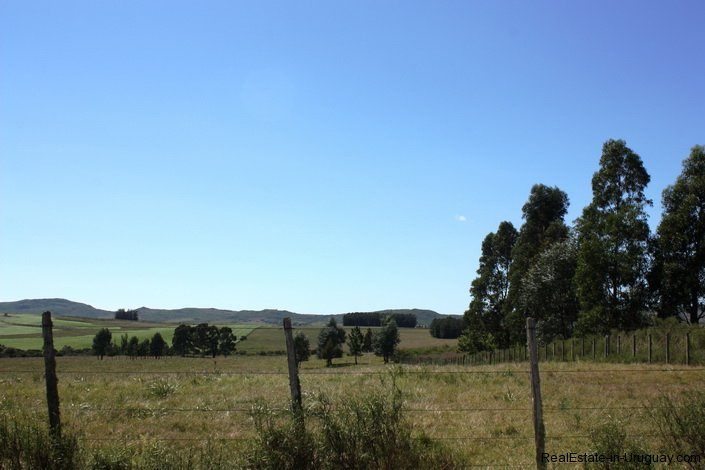5118-Field-with-great-Potential-to-Build-andor-use-as-Farmland-2592