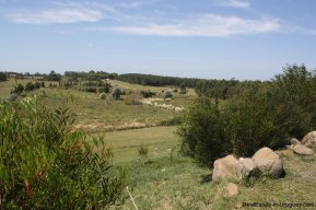 5156-The-Perfect-Land-to-Build-and-Close-to-La-Barra-2686