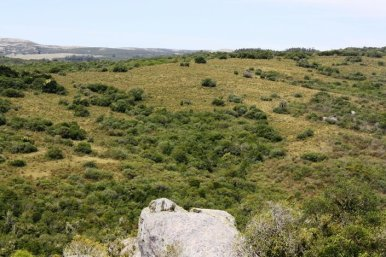 5160-Views-from-Small-Mountain-Farm-in-the-Aigua-Area