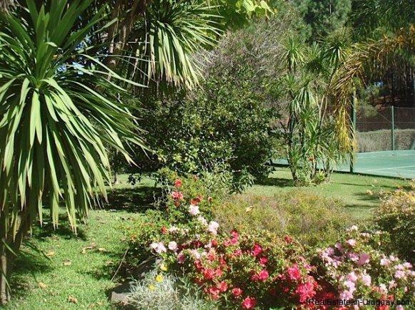 0002TA-Great-Family-Property-in-Punta-Ballena-3995